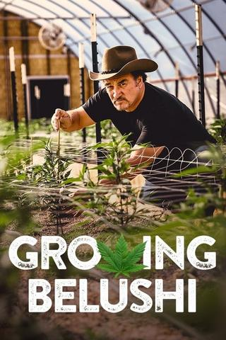 Growing Belushi - Saison 1