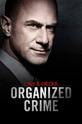 Law & Order: Crimes Organisés - Saison 1